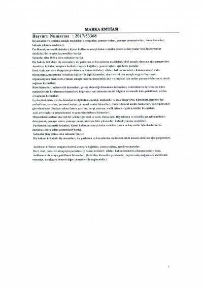 Master Premium Marka Tescil-page-002